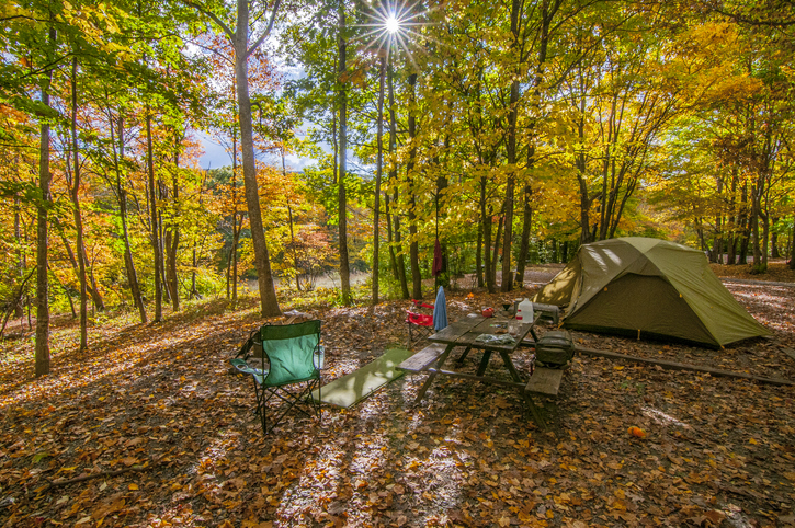 Autumn Campsite scene. All you have to do to enjoy the fall colors at Grayson Highlands State Park in Virginia is sit down at your campsite.
