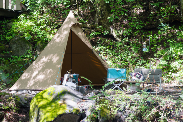 Tent in rich nature (image of camping and traveling) image.
